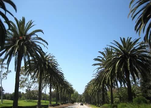 美國遊學-Kaplan-聖塔巴巴拉分校-校外環境