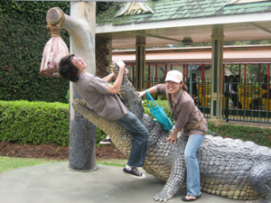 鱷魚是澳洲很經典的動物